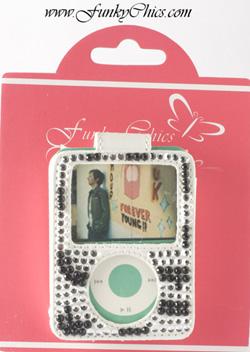MP3-zebra